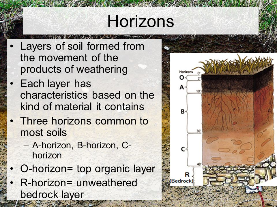 Chapter 5 weathering and soil ppt video online download for Top layer of soil