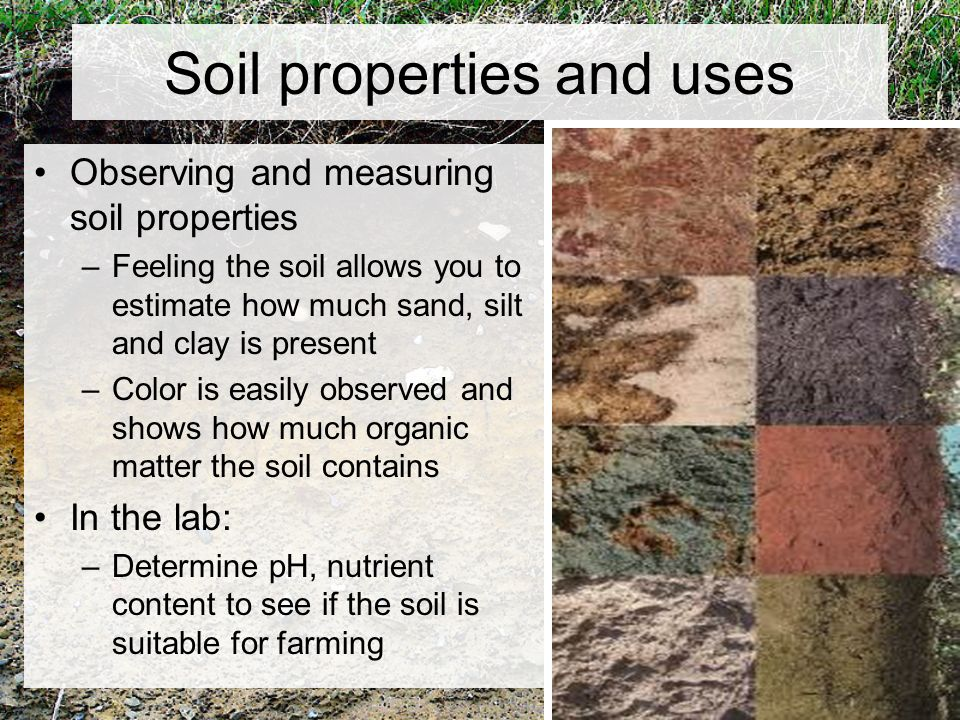 Chapter 5 weathering and soil ppt video online download for Soil and its uses