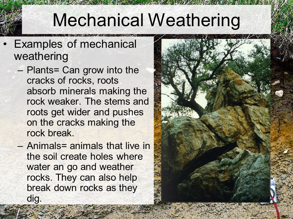 Chapter 5 weathering and soil ppt video online download for Soil is an example of
