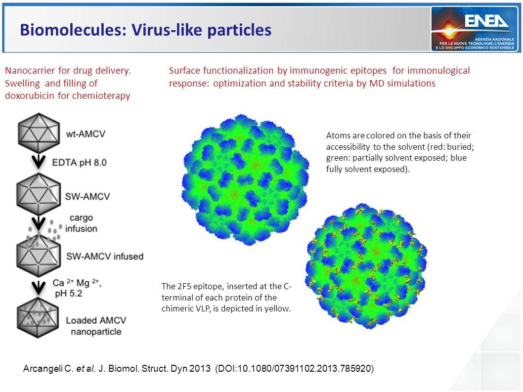 Biomolecules: Virus-like particles