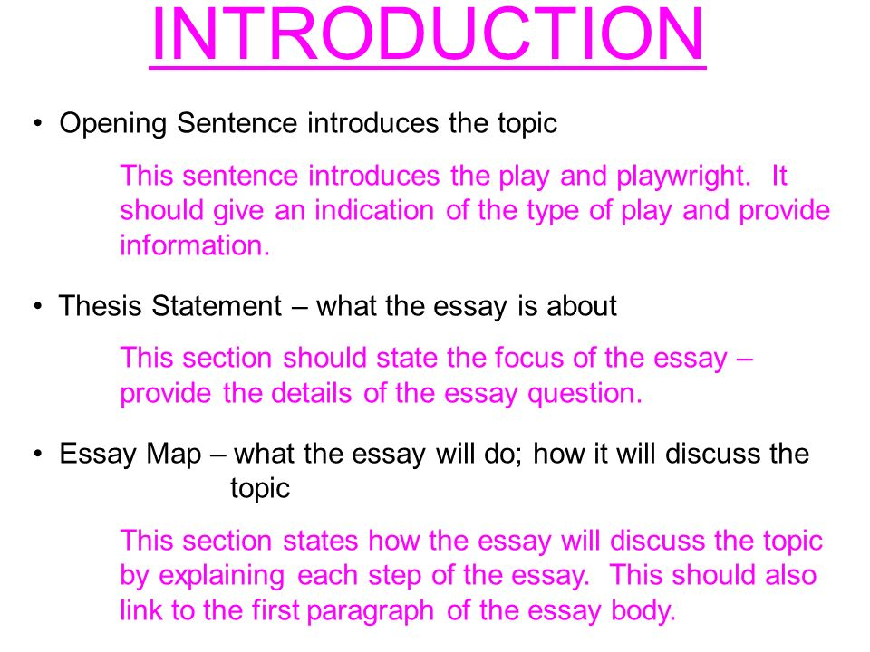What Should Be Included in an Introductory Paragraph for an Essay?
