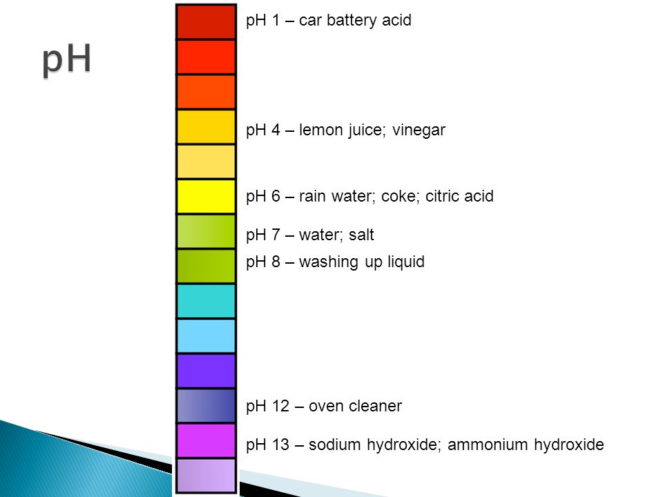 Indicators For Acids Alkalis Ppt Video Online Download