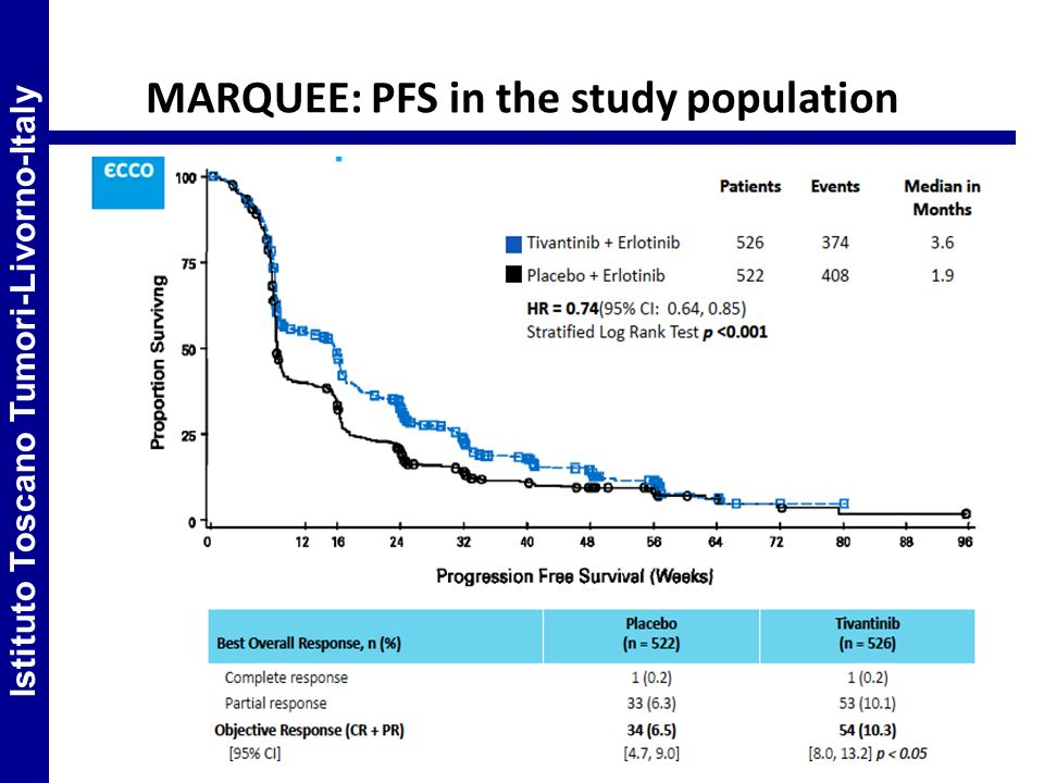 MARQUEE: PFS in the study population