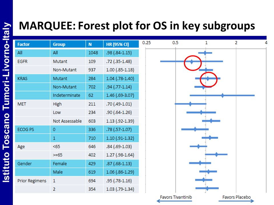 MARQUEE: Forest plot for OS in key subgroups
