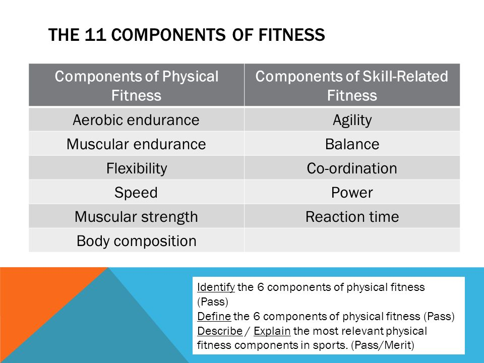 11 components of physical fitness essay If you want to be truly fit, work to improve these five main areas of physical fitness: cardiovascular endurance this is the ability of your heart and lungs to work efficiently at a moderate intensity over a long period of time to improve in this area, perform cardiovascular activities such as brisk walking, bicycling, running, lap swimming.