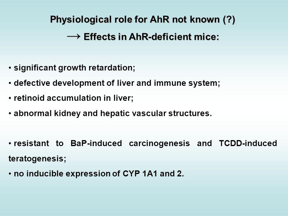 relative potencies of steroids