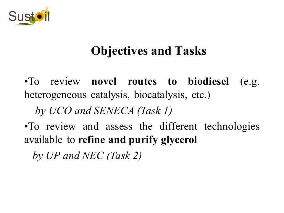 Objectives and Tasks To review novel routes to biodiesel (e.g. heterogeneous catalysis, biocatalysis, etc.)