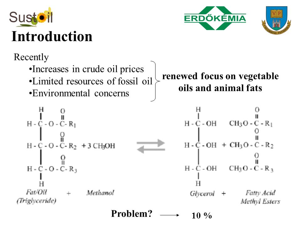 renewed focus on vegetable oils and animal fats