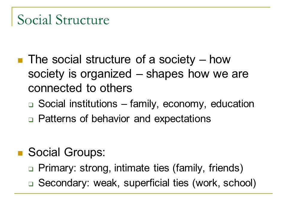 how society is organized pdf