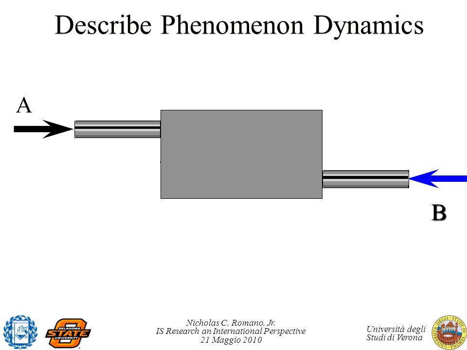 Describe Phenomenon Dynamics