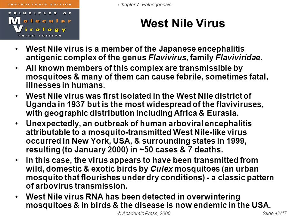 a geography of the west nile virus Who fact sheet on west nile virus: includes key facts, definition, outbreaks,  transmission, diagnosis, treatment, prevention, who response.