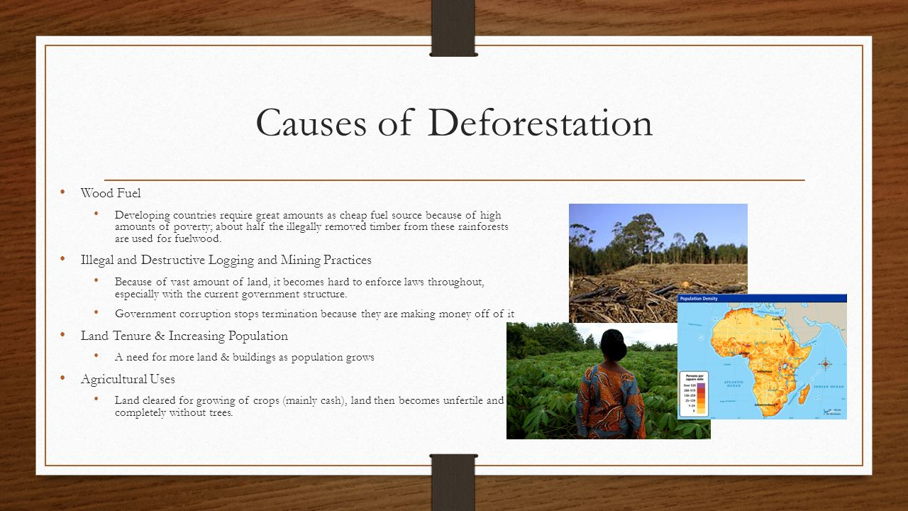 agriculture and current deforestation practices essay The environmental impact of agriculture is the effect that different farming  practices have on the  one of the causes of deforestation is to clear land for  pasture or crops  the exponential population increase in recent decades has  increased the practice of agricultural land conversion to meet demand for food  which in turn.