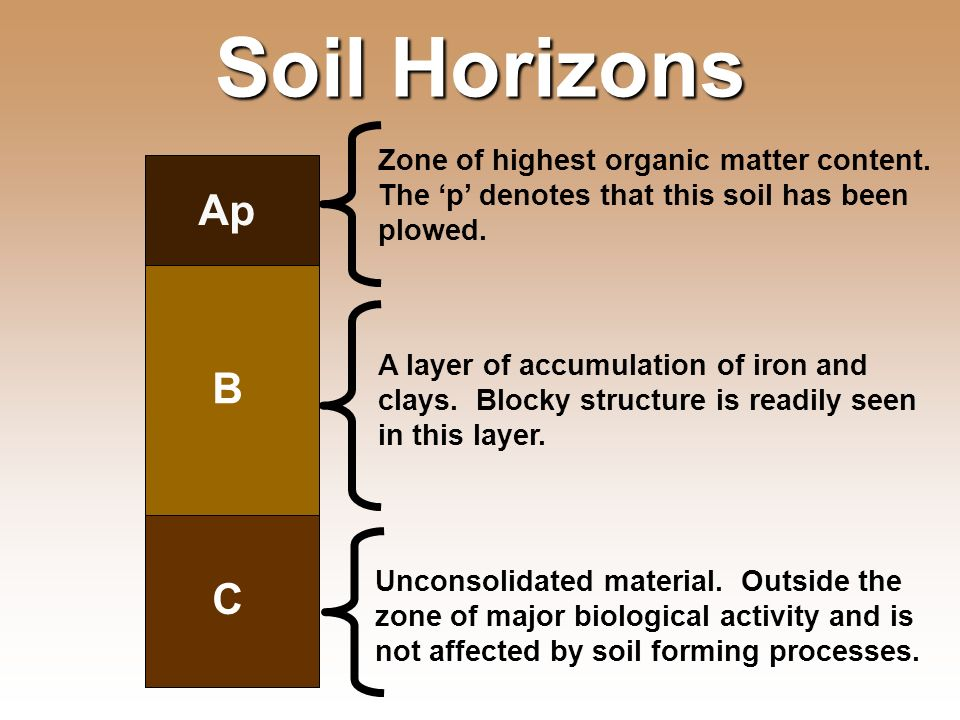 Essential question what is soil made of ppt video for Soil zone of accumulation