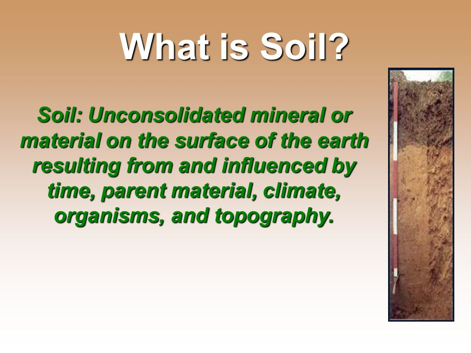 Essential question what is soil made of ppt video for What is soil mostly made of