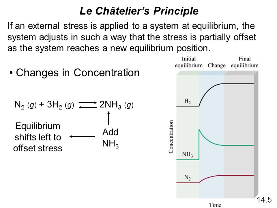 equilibrium reactions and le chateliers principle Unit 11 quiz--equiliblrium and le chatelier's principle: which of the below are ways that allow you to recognize equilibrium in the reaction n 2 o 4.