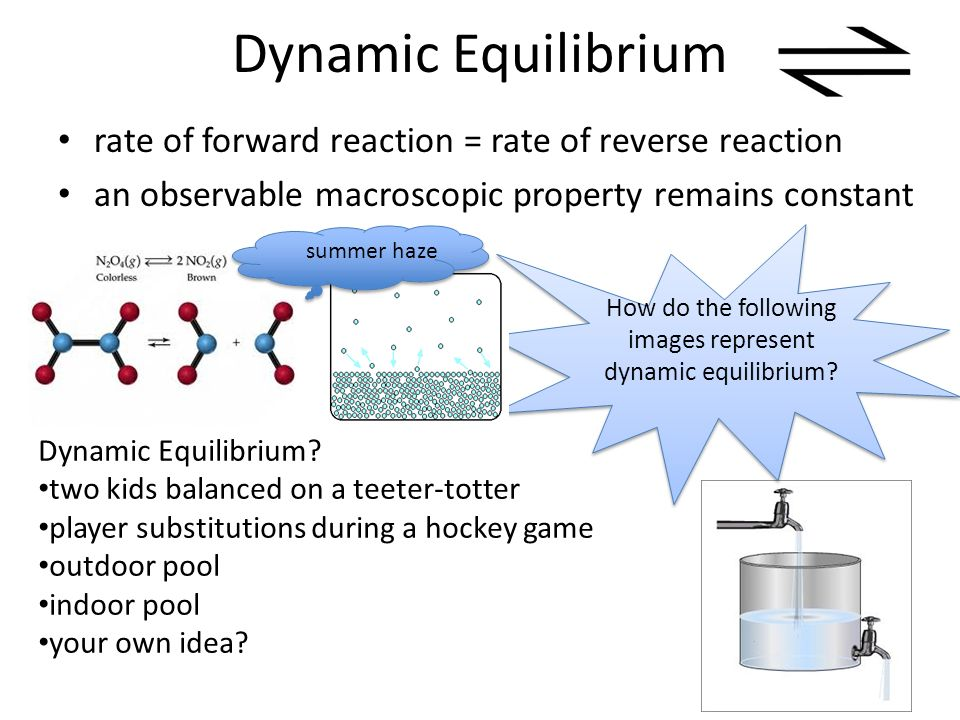 An investigation of the properties of chemical systems at equilibrium