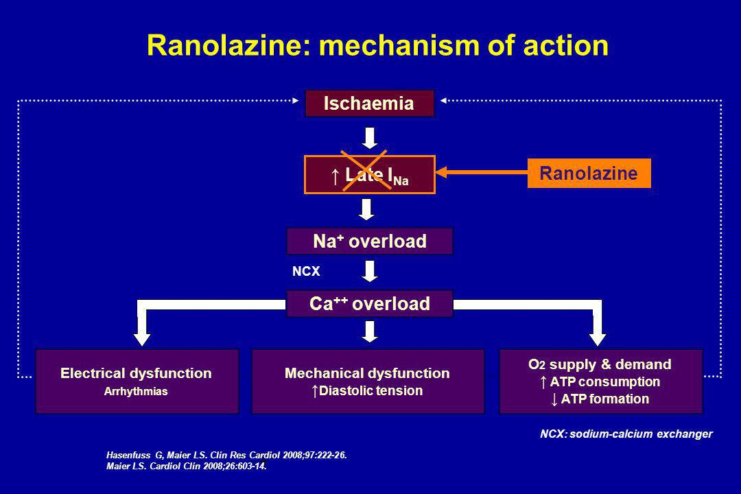Ranolazine: mechanism of action