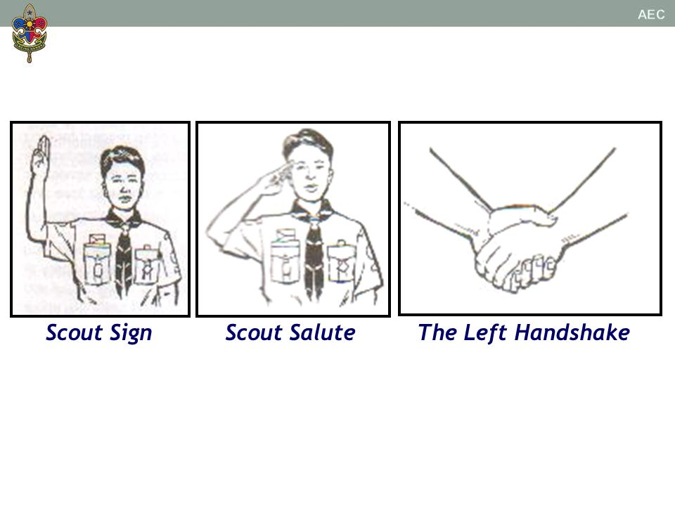 Scout Sign Scout Salute The Left Handshake