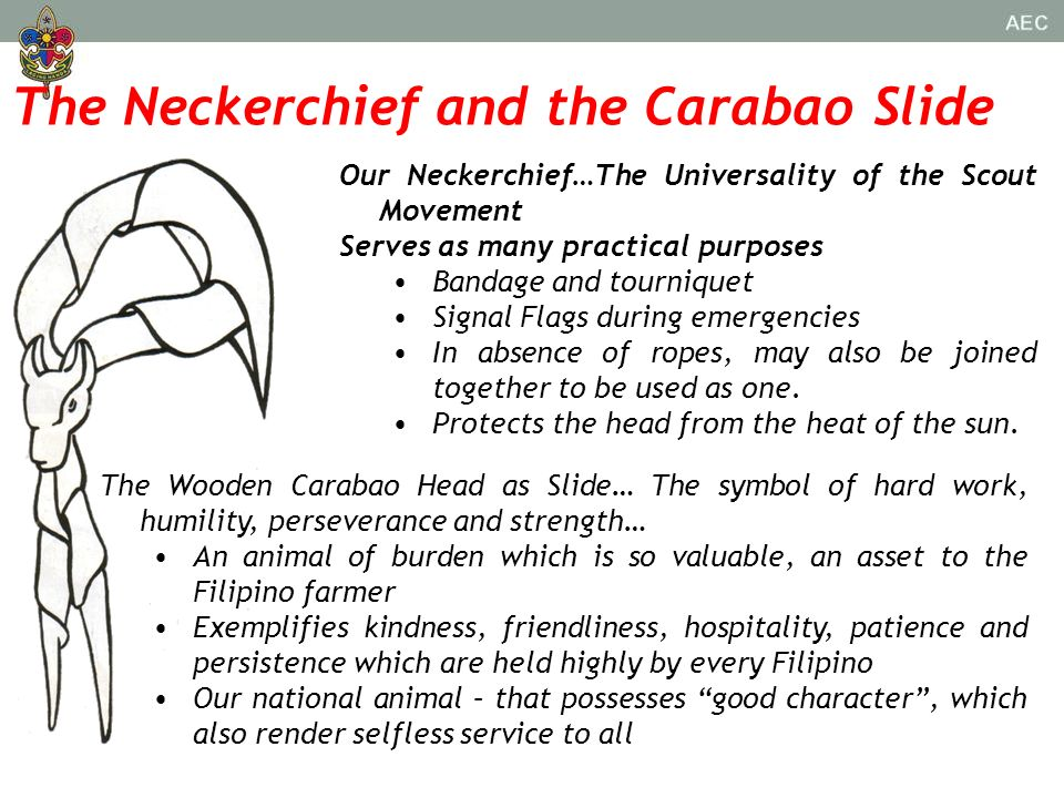 The Neckerchief and the Carabao Slide