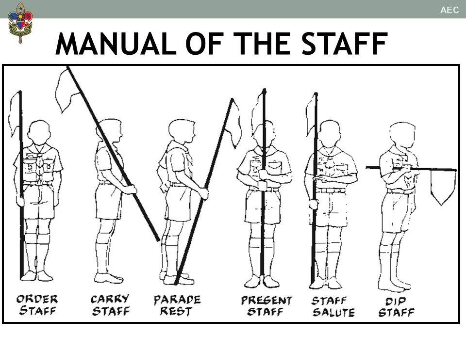 MANUAL OF THE STAFF
