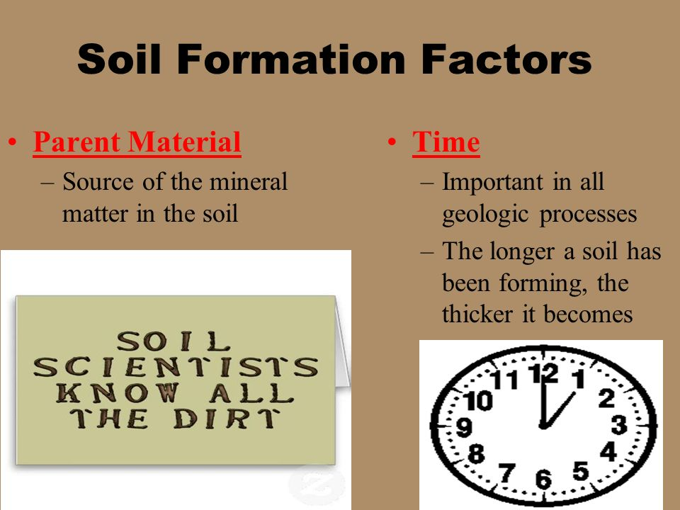 the soil forming factors Hitensity of the activity of the diflereut soil-forming factors  some of the most important soil types of northern united the  of the \\\ formation of soil.