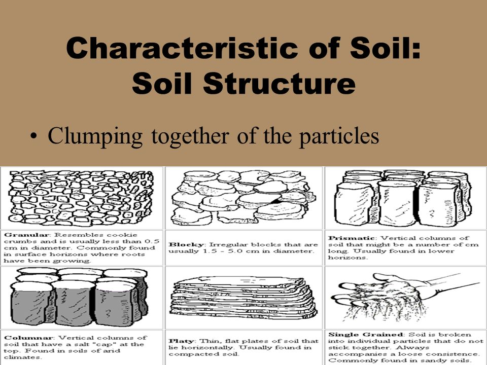 Weathering and erosion ppt video online download for Characteristics of soil