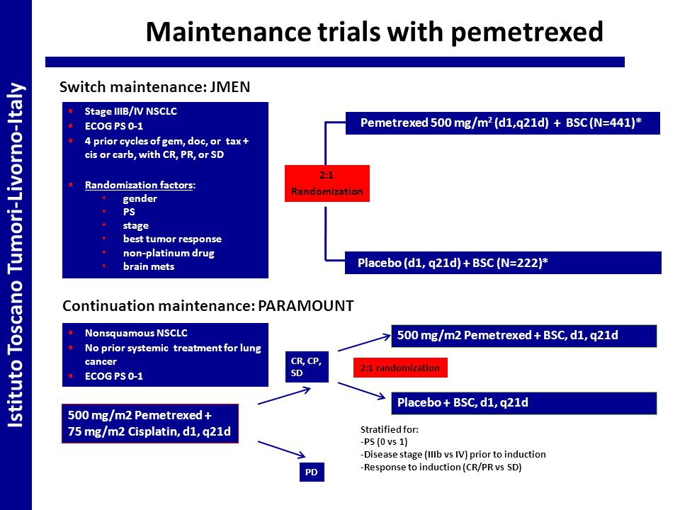 Maintenance trials with pemetrexed