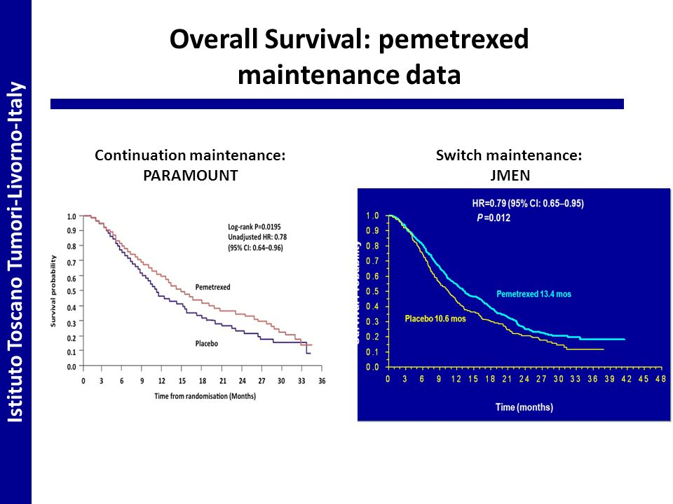 Overall Survival: pemetrexed maintenance data