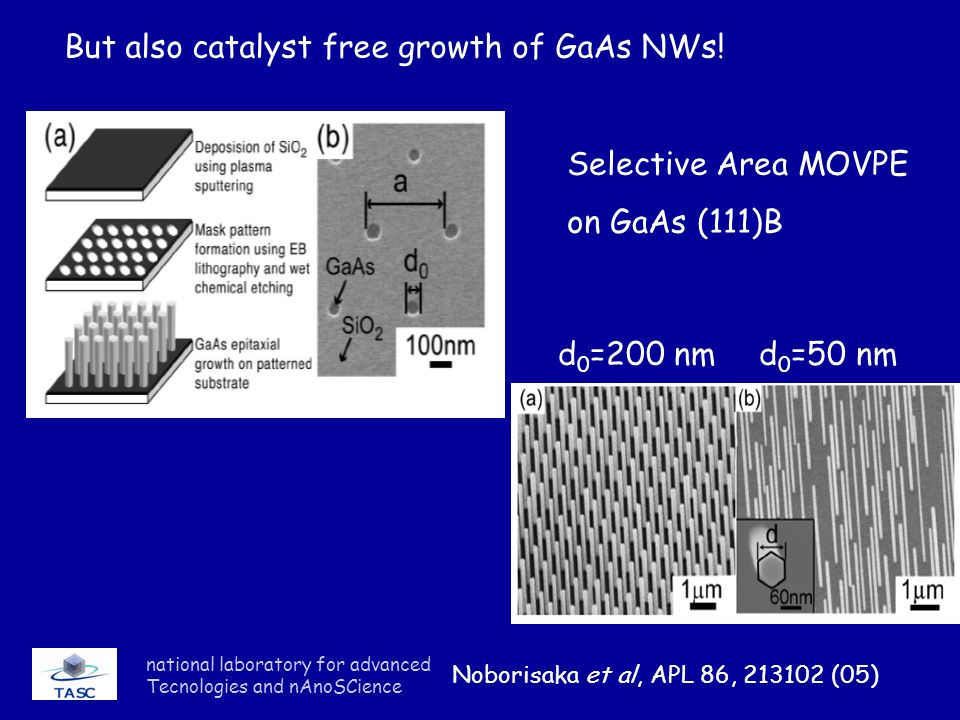 But also catalyst free growth of GaAs NWs!
