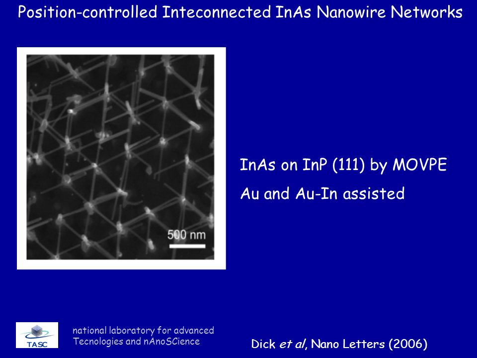 Position-controlled Inteconnected InAs Nanowire Networks