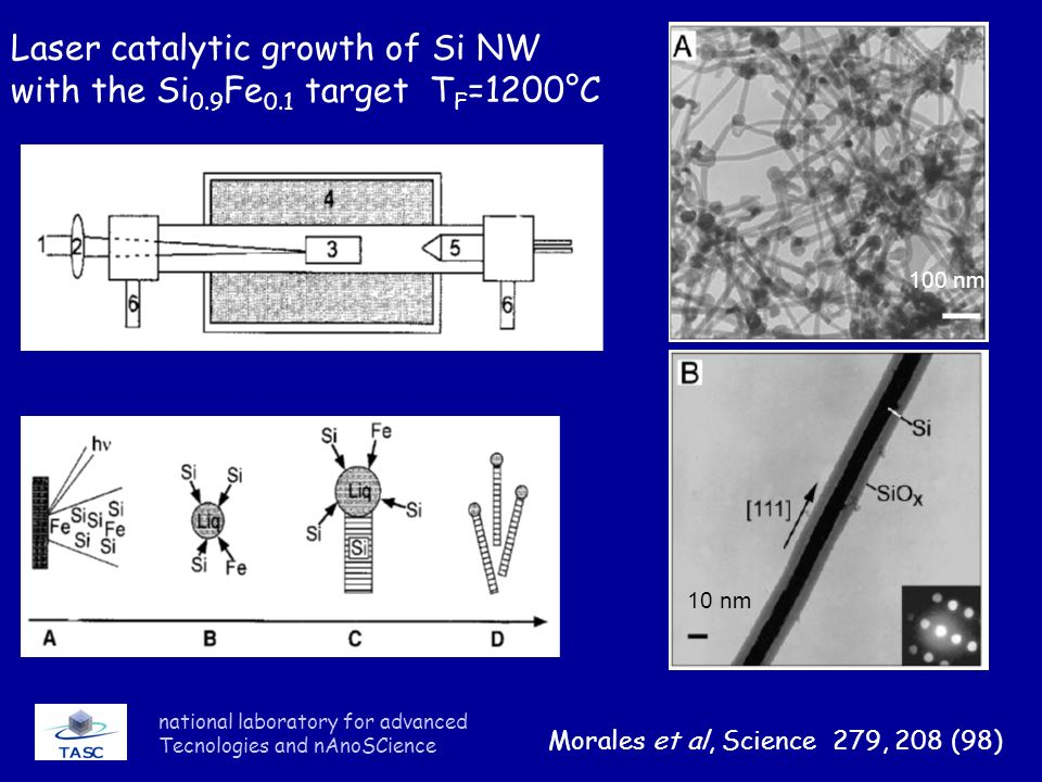Laser catalytic growth of Si NW with the Si0.9Fe0.1 target TF=1200°C
