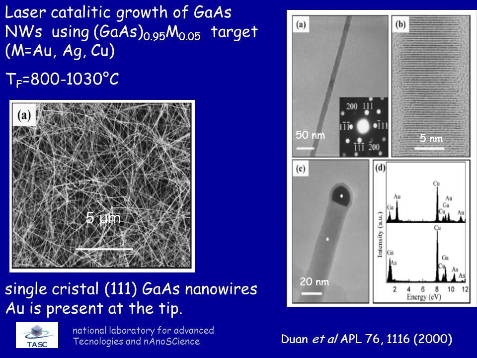 single cristal (111) GaAs nanowires Au is present at the tip.
