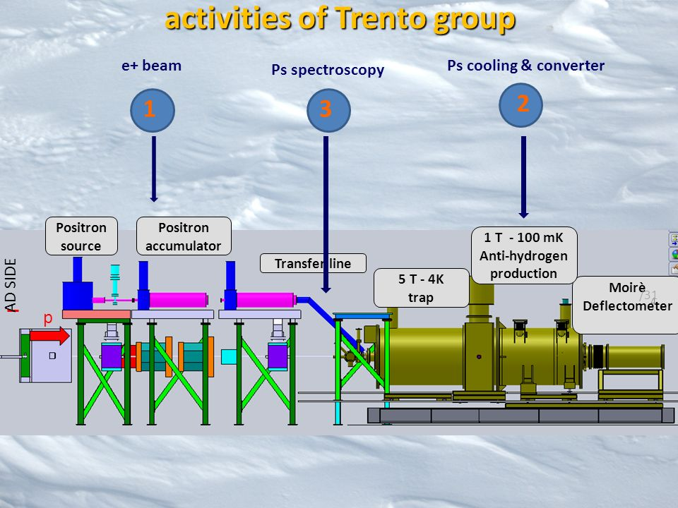 activities of Trento group