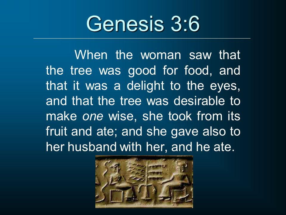 The fall studies in the book of genesis genesis 3 ppt video 8 genesis 36 sciox Choice Image