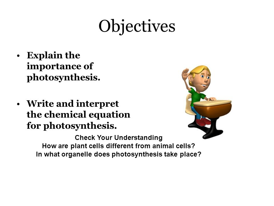 the importance of photosynthesis Photosynthesis is thus one of the most important chemical reactions happening on the earth, which should be preserved as long as we wish for us and our generations yet to come to have a healthy and long-life.