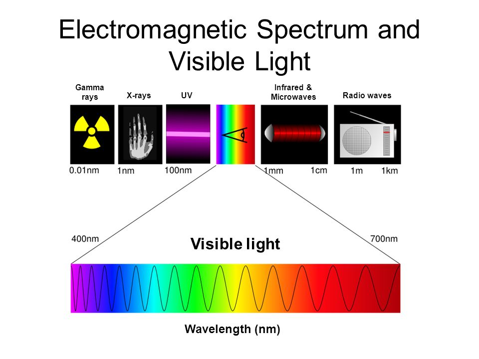 X Rays Electromagnetic Spectrum Photosynthesis. - ppt ...