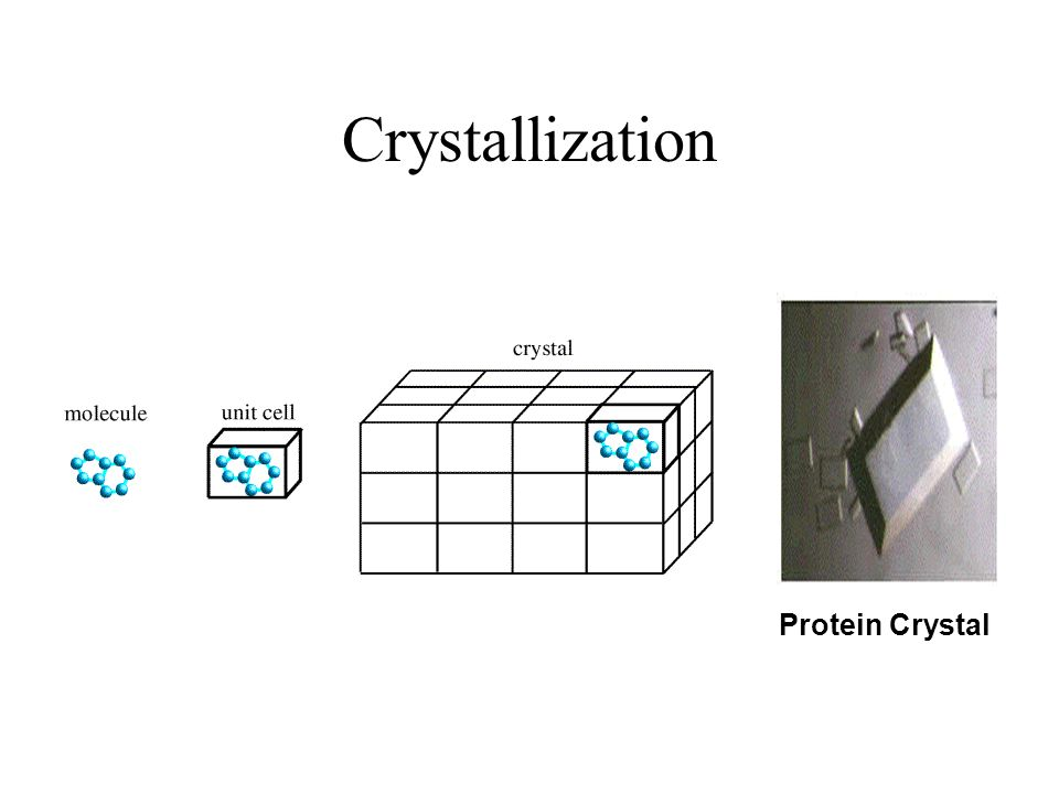 Crystallization Protein Crystal