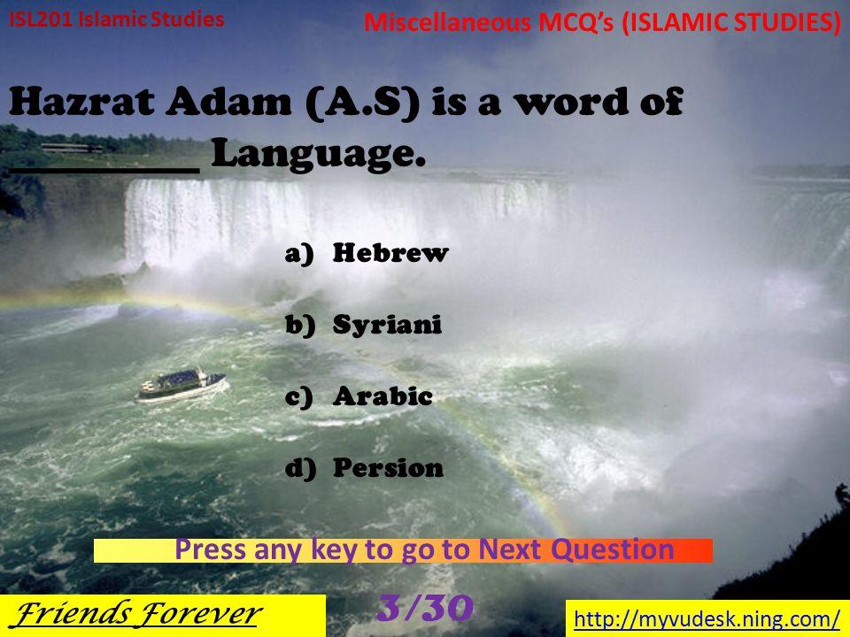 Hazrat Adam Grave