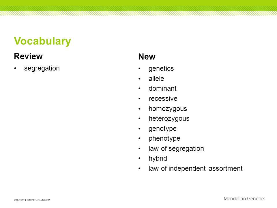 Mendel genetics vocabulary worksheet