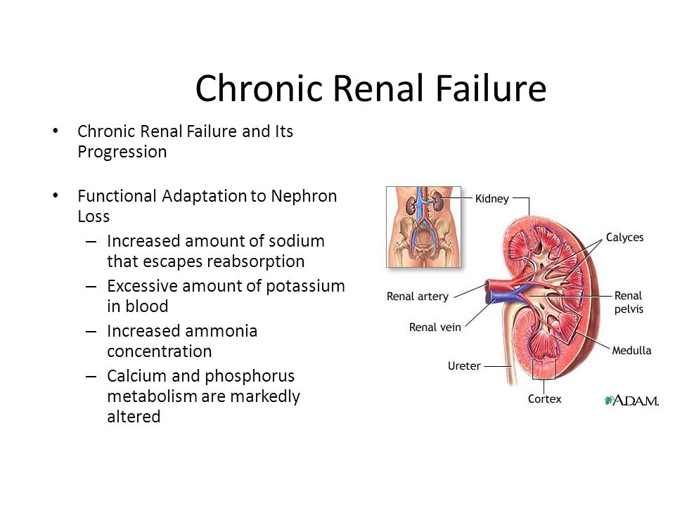 the relationship of depression to survival in chronic renal failure