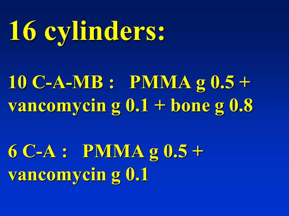 16 cylinders: 10 C-A-MB : PMMA g 0. 5 + vancomycin g 0. 1 + bone g 0