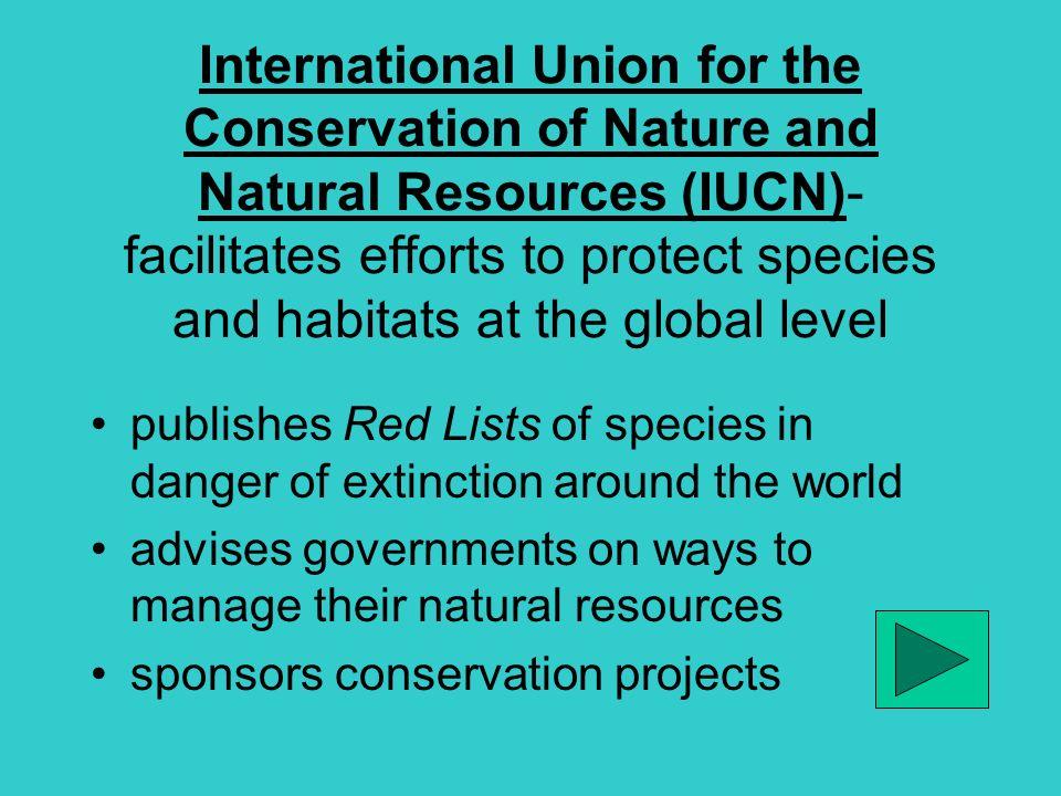Biodiversity. - ppt download