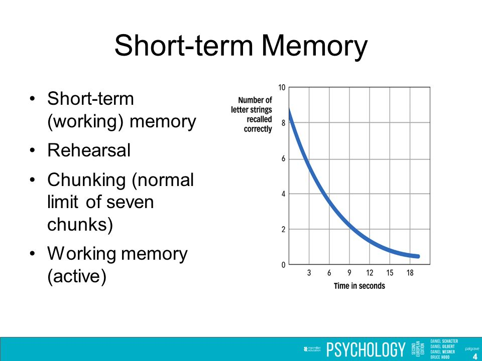 Short Term Memory : Chapter memory slides prepared by ppt video online