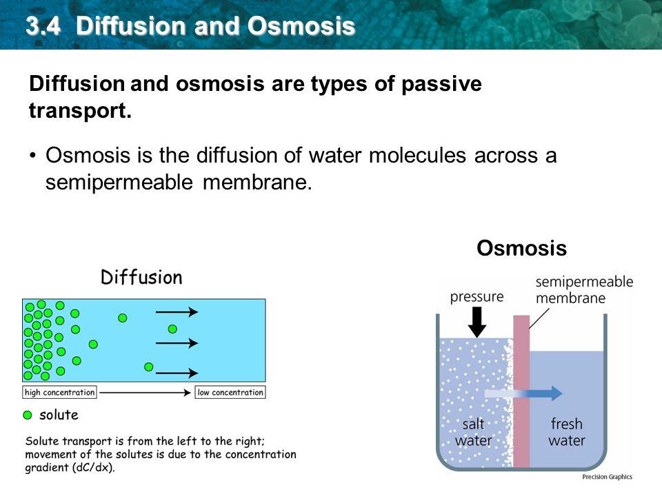 brownian motion diffusion and osmosis See my blog causality, correlation, and brownian motion.