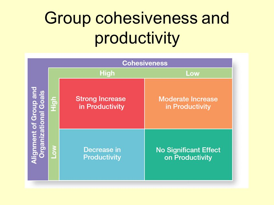 Group cohesiveness and productivity