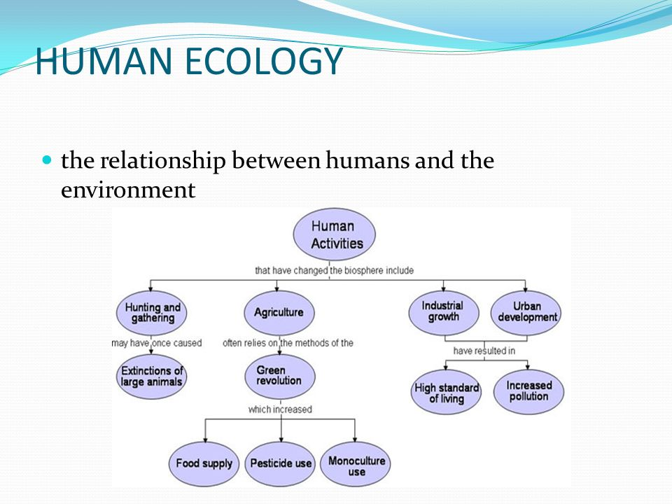 the relationship between man and environment