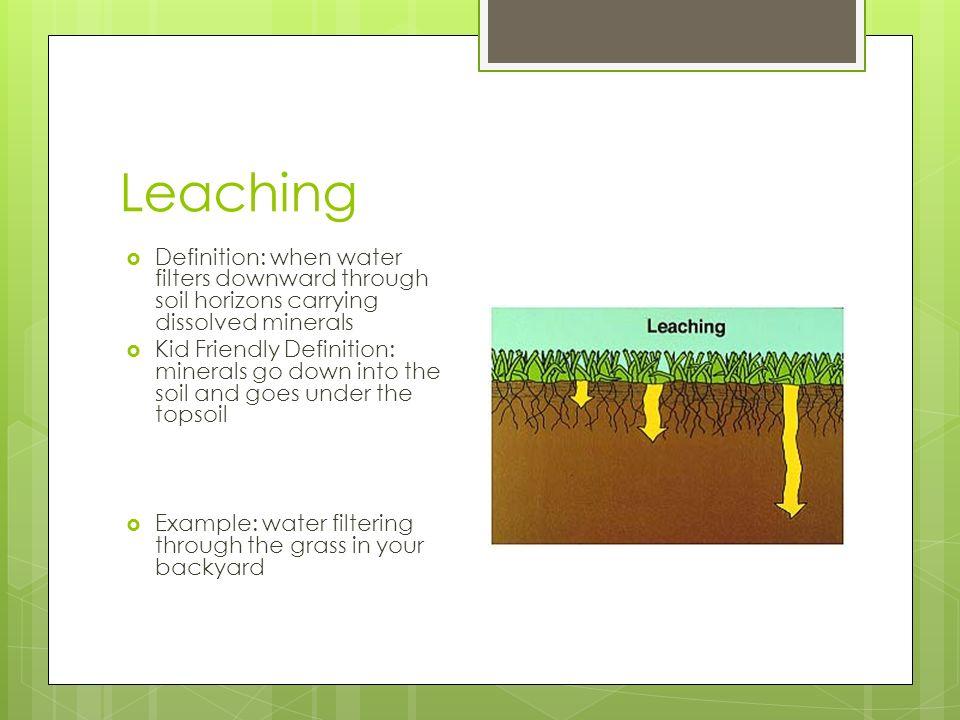 Humus soil definition for kids images for Define soil formation