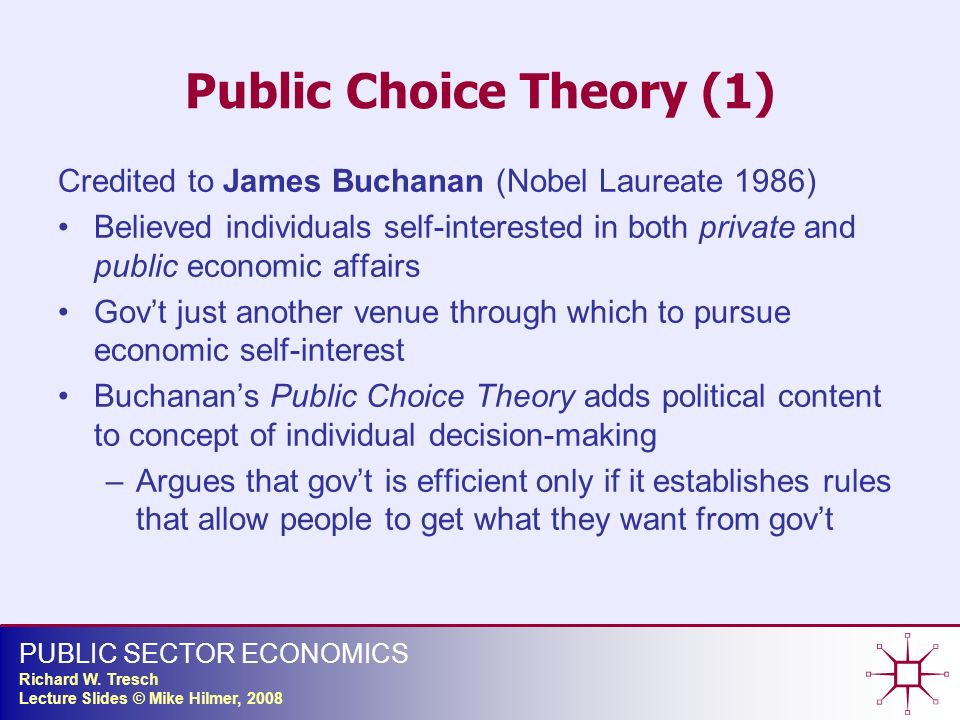 public choice theory essay The defining feature of rational choice theory is that people always try to maximize their interests when it comes to things  economic and public choice.