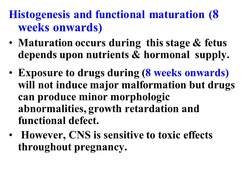 Histogenesis and functional maturation (8 weeks onwards)