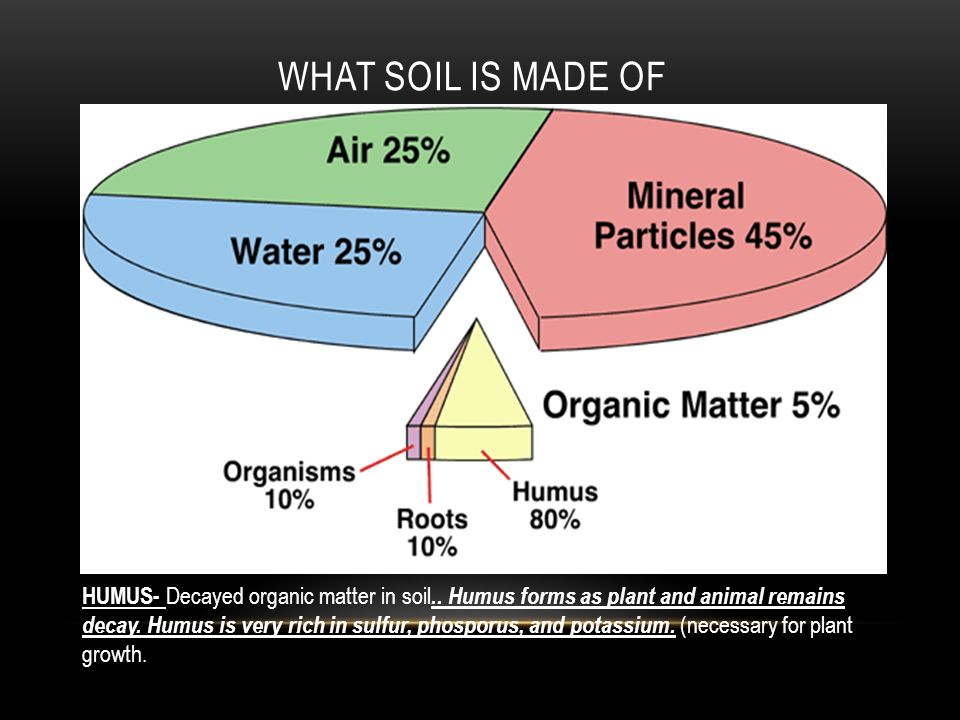 Soils ppt video online download for Soil is made of